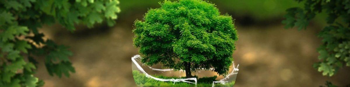 miljø bevidst trykkeri i Skjern, Cradle to Cradle certified